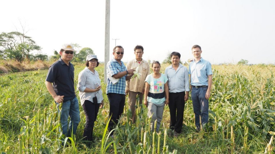 The visit to Lao maize farms
