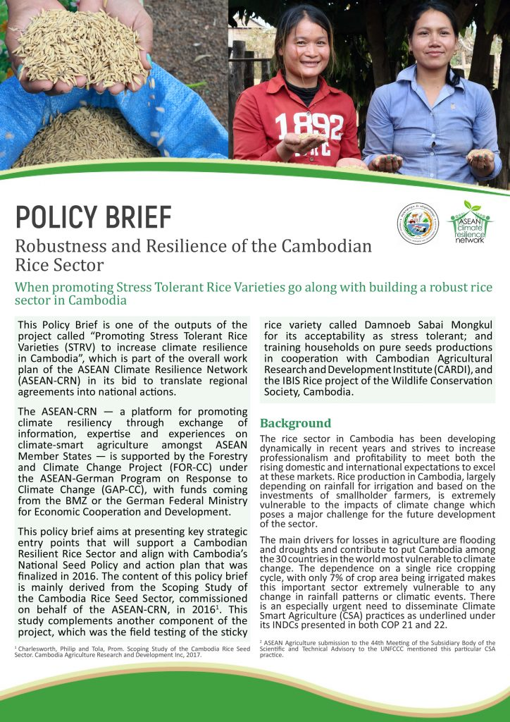 Policy Brief: Robustness and Resilience of the Cambodian Rice Sector